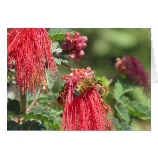 Abelhas na flor cor-de-rosa cartão de nota