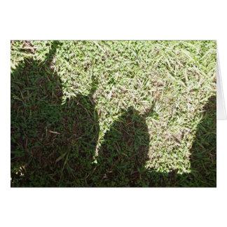 Abóboras da sombra cartão de nota