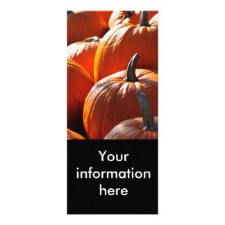 abóboras! panfleto informativo personalizado