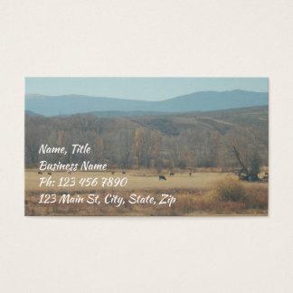 Abra o cartão de visita da escala