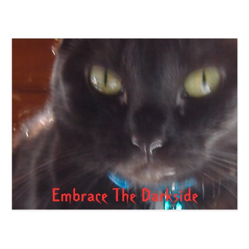 Abrace o Darkside Cartao Postal
