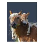 Abraços do bebê cartao postal