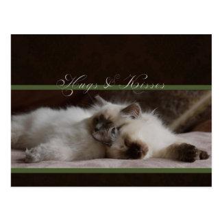 Abraços e cartão dos beijos cartão postal