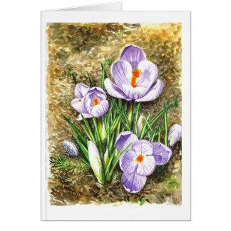 Açafrão no primavera cartão