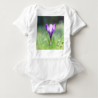 Açafrão roxo no primavera body para bebê