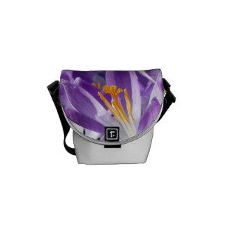 Açafrão violeta do primavera bolsa mensageiro
