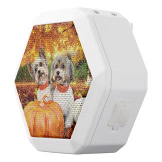 Acção de graças da queda - máxima & Leo - Yorkies Caixa De Som Branca Com Bluetooth