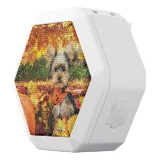 Acção de graças da queda - máxima - Yorkie Caixa De Som Branca Com Bluetooth