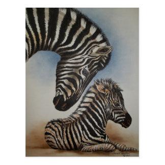 Acessórios da imagem invertida (zebra) cartão postal