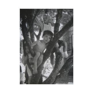 Acima de uma árvore impressão de canvas esticada