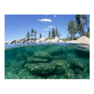 Acima e abaixo de Lake Tahoe Cartão Postal
