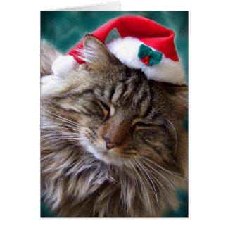 Acorde-me acima do cartão do gato do papai noel