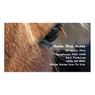 Acres dos calçados do cavalo cartão de visita