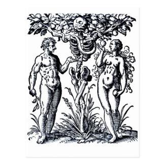 Adam e véspera e a árvore do cartão do cartão postal
