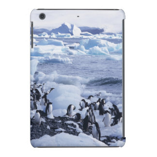 Adeliae do Pygoscelis dos pinguins de Adelie) Capa Para iPad Mini Retina