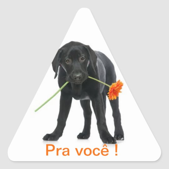 adesivo cão/flor