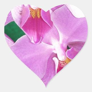 Adesivo Coração A orquídea floresce close up no rosa