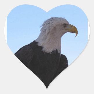Adesivo Coração Águia americana