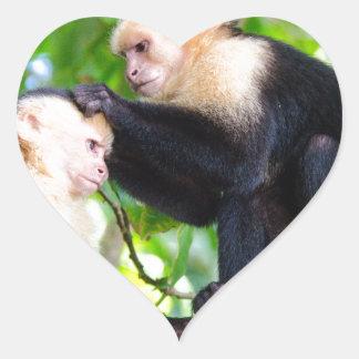 Adesivo Coração Amor do macaco