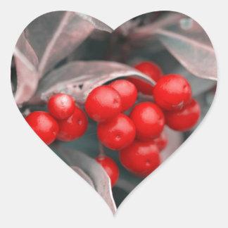 Adesivo Coração Bagas do Natal