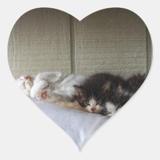 Adesivo Coração Belas Adormecidas