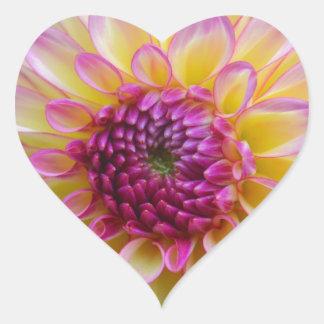 Adesivo Coração Beleza da dália