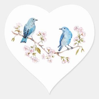 Adesivo Coração Bluebirds da montanha no ramo de Sakura