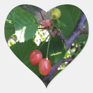 Adesivo Coração Cerejas que giram o vermelho