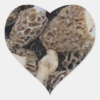 Adesivo Coração Cogumelos do Morel