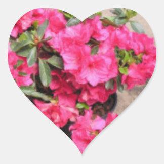 Adesivo Coração Coração do rododendro
