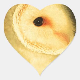 Adesivo Coração Coruja de celeiro