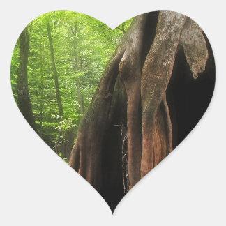 Adesivo Coração Cypress oco maciço