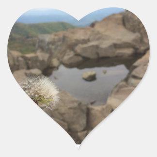 Adesivo Coração Dente-de-leão sobre uma lagoa