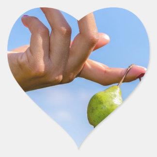 Adesivo Coração Entregue guardarar duas peras verdes de suspensão