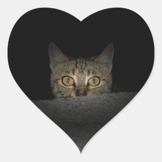 Adesivo Coração Espreite uma vaia