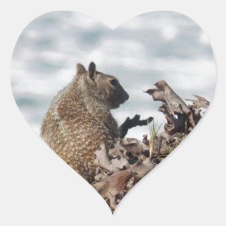 Adesivo Coração Esquilo pequeno
