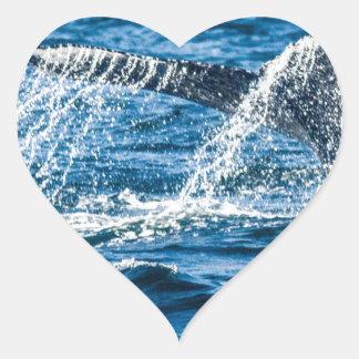 Adesivo Coração Estado de Washington da baleia de Humpback