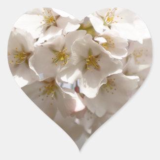 Adesivo Coração Flor de cerejeira