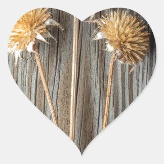Adesivo Coração Flor secada de Sun