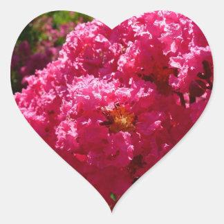 Adesivo Coração Flores da magenta da árvore de Myrtle de Crepe