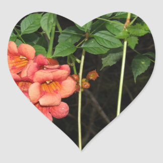 Adesivo Coração Flores da meia-noite