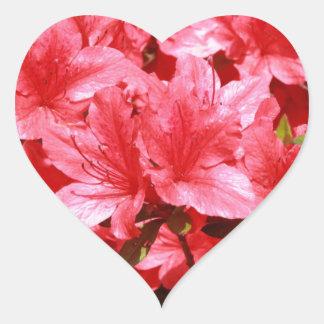 Adesivo Coração flores do vermelho da azálea