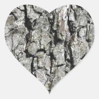Adesivo Coração Fundo da textura do latido de árvore da pera