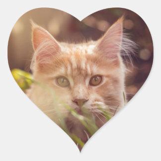 Adesivo Coração gato
