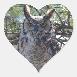 Adesivo Coração Grande coruja Horned na árvore