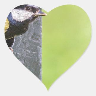 Adesivo Coração Grande pai do melharuco no furo da caixa-ninha