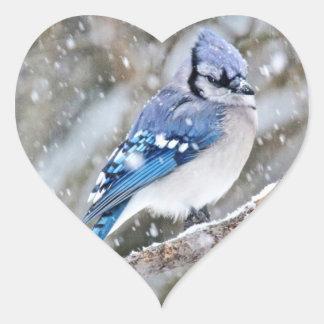 Adesivo Coração Jay azul em uma tempestade de neve