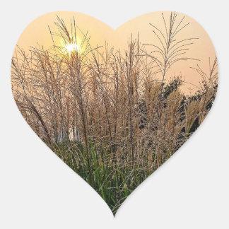 Adesivo Coração Junco no por do sol