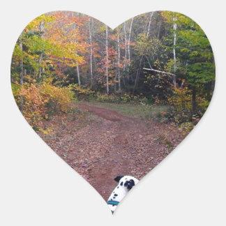 Adesivo Coração Kevin o Dalmatian