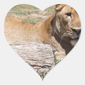 Adesivo Coração Leão